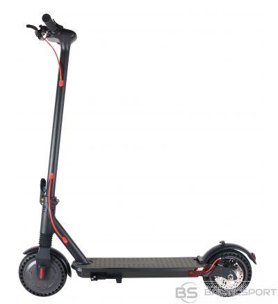 E-Scooter WINDGOO M12